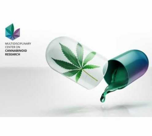 Hebrew University and City of Jerusalem to Host 'International Conference on the Cannabinoids' in 2021